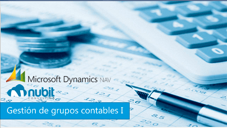 gestion-grupos-contables-erp-nav