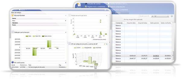 Microsoft Dynamics NAV - Gestión Financiera