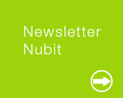 newsletter-nubit consulting
