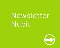 newsletter-nubit consulting