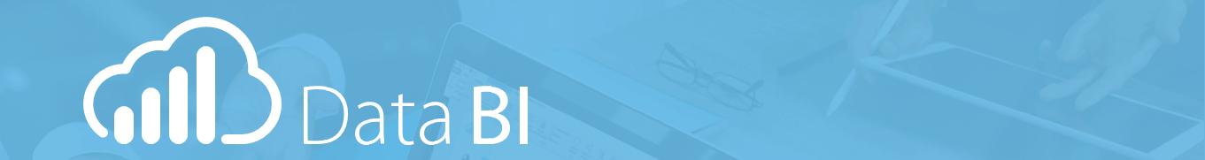 databi-analisis-negocio-nubit